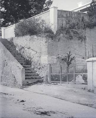 Photograph - Steps by William Haggart