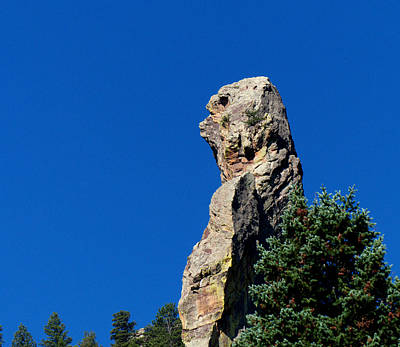 Photograph - Stone Bear Lookout by Thomas Samida