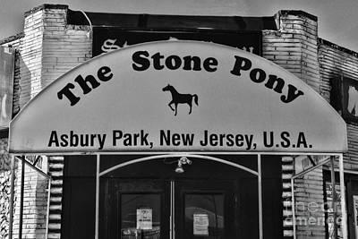Stone Pony Art Print by Paul Ward