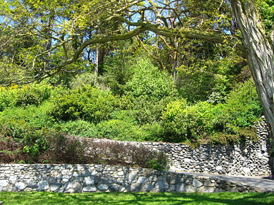 Photograph - Stone Wall 1 by David Trotter