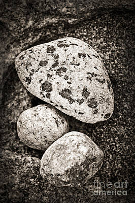 Arranges Photograph - Stones by Elena Elisseeva
