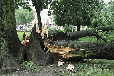 Lviv Photograph - Storm Damage by RIA Novosti