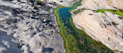Point Lobos Photograph - Stream Flowing Through A Rocky by Panoramic Images