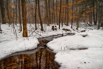 Etherial Photograph - Stream Through The Misty Winter Woods by Jeff Sinon