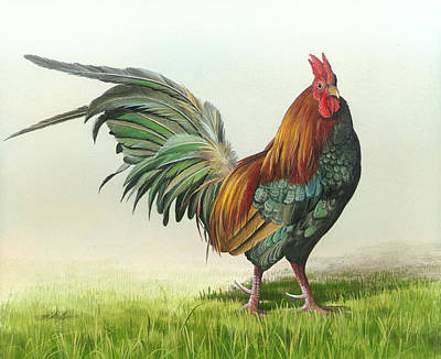 Strutting Art Print by Mike Brown