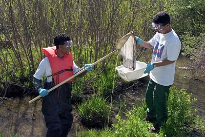 Wetlands Photograph - Students Studying River Water Quality by Jim West