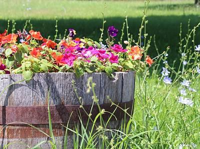 Photograph - Summer Garden by Kume Bryant
