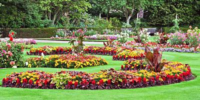 Fantasy Flowers Photograph - Summer Garden by Tom Gowanlock