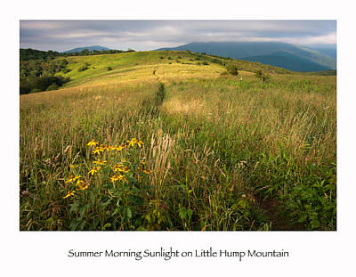 North Carolina Mountains Photograph - Summer Morning Sunlight On Little Hump Mountain by Keith Clontz
