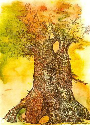 Summer Oak 2 Original