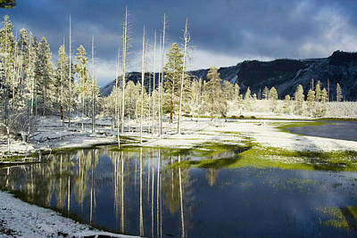 Photograph - Summer Snow In Yellowstone by Karen Lindquist