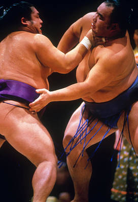 Photograph - Sumo Wrestlers by Vandystadt