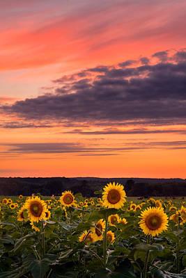 Buttonwood Farm Photograph - Sun Over Sun by Michael Blanchette