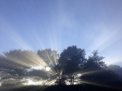 Sun Rays Art Print by Les Cunliffe
