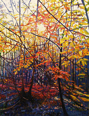 Painting - Sun Through Trees by Helen White