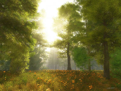 Meadow Digital Art - Sunlit Meadow by Cynthia Decker