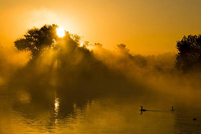 Sunrise At The Sepulveda Dam Wildlife Reserve Art Print