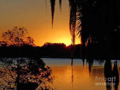 Photograph - Sunrise On Lake Weir - 1 by Tom Doud