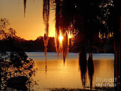 Photograph - Sunrise On Lake Weir - 2 by Tom Doud
