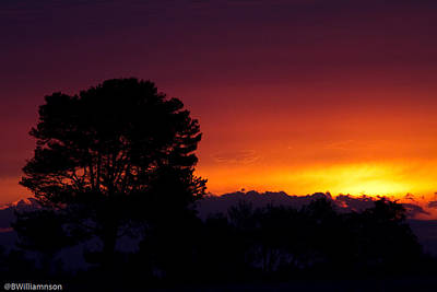 Art Print featuring the photograph Sunset by Brian Williamson