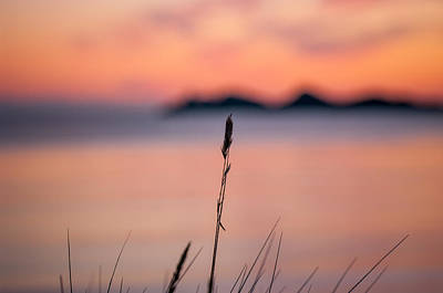 Sunset Art Print by Mirra Photography