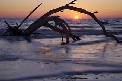Photograph - Sunset On Driftwood Beach by Byron Jorjorian