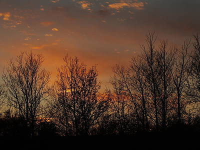 Photograph - Sunset Orange by Gene Cyr
