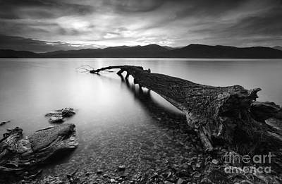 Sunset Over Fallen Tree Lake Maggiore Italy Art Print by Matteo Colombo