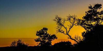 Sunset Silhouette Print by Debra and Dave Vanderlaan