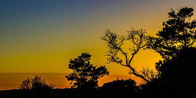 Sunset Silhouette Art Print by Debra and Dave Vanderlaan