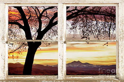 Sunset Tree Silhouette Abstract Picture Window View Art Print by James BO  Insogna
