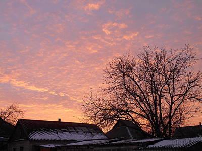 Photograph - Sunset by Yuriy Vekshinskiy