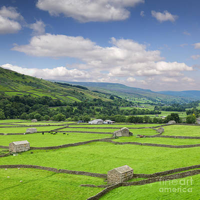 Photograph - Swaledale Yorkshire Dales England by Colin and Linda McKie