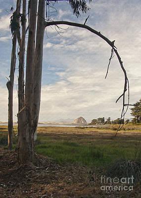 Digital Art - Sweet Water View by Sharon Foster