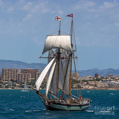 Tall Ships Photograph - Tall Ship Alicante by Pablo Avanzini
