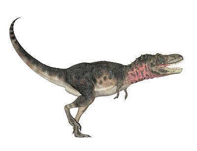 Paleozoology Photograph - Tarbosaurus Bataar Dinosaur by Friedrich Saurer