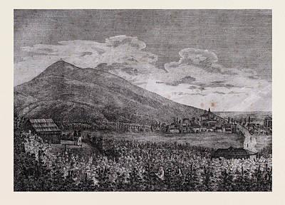 Tarczal Vineyards, Trentino , Italy, 19th Century Engraving Art Print