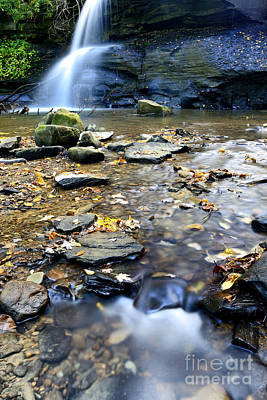 Webster Park Photograph - Tecumseh Falls by Thomas R Fletcher