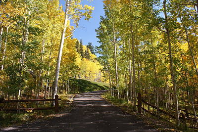 Telluride Colorado Fall Art Print by Michael J Bauer