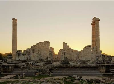 Genealogy Photograph - Temple Of Apollo by David Parker