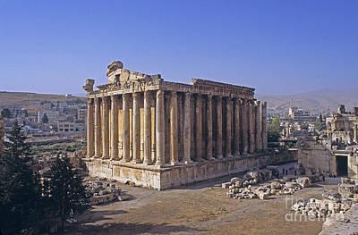 Bacchus Photograph - Temple Of Bacchus, Lebanon by Catherine Ursillo