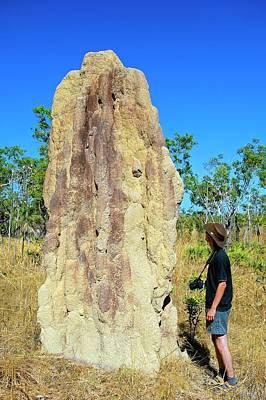 Termite Mound Art Print