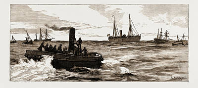 Port Elizabeth Drawing - The Assassination Of Carey, Arrest Of Odonnell At Port by Litz Collection