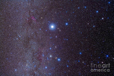Ic 2177 Photograph - The Constellation Of Canis Major by Alan Dyer