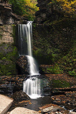 The Cowshed Falls Art Print by Chris Babcock