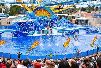 The Dolphin Show Blue Horizons At Seaworld. Art Print by Jamie Pham