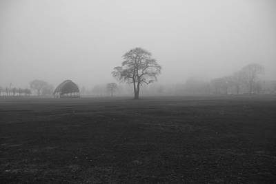 Photograph - The Fog Tree by Keith McGill