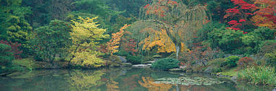 Weeping Willow Photograph - The Japanese Garden Seattle Wa Usa by Panoramic Images