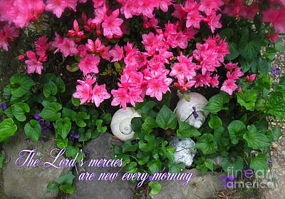 Photograph - The Lord's Mercies by Nancy Patterson