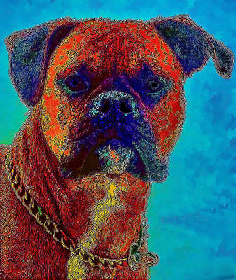 Photograph - The Modern Boxer Bulldog by Lesa Fine